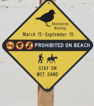 Watch for these signs to know if you are in a shorebird conservation area.