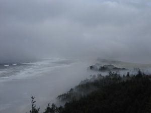 Cape Lookout foggy
