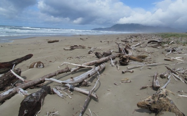 Nehalem Spit after the storm